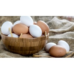 Free Range Eggs (30 x large)