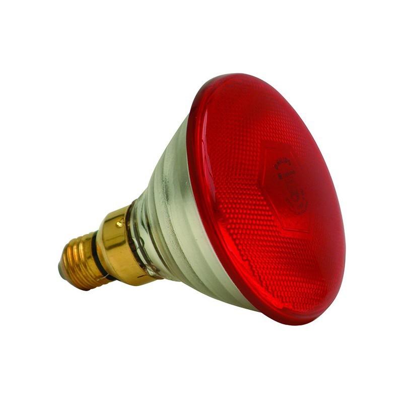 Infra red globe 175w