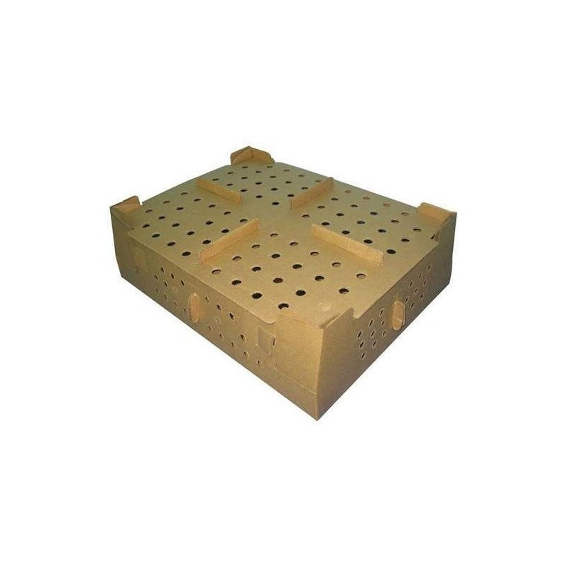 Corrugated box for 100 day old chicks